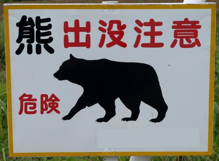 熊の走力はウサイン・ボルト以上の速さ!熊から逃げるのではなく寄せ付けるな!