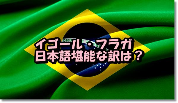 イゴール・フラガ日本語堪能の訳